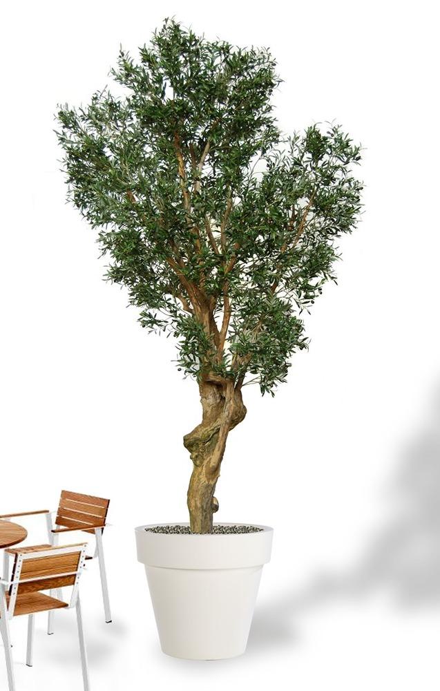Olive Garda 350 cm Green